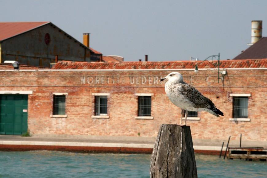 venezia 2 parte (23)