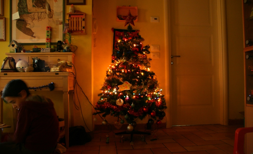 8 dicembre (16)