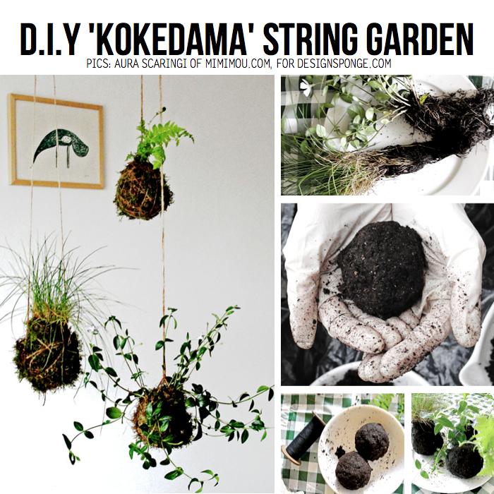 kokedama-string-garden